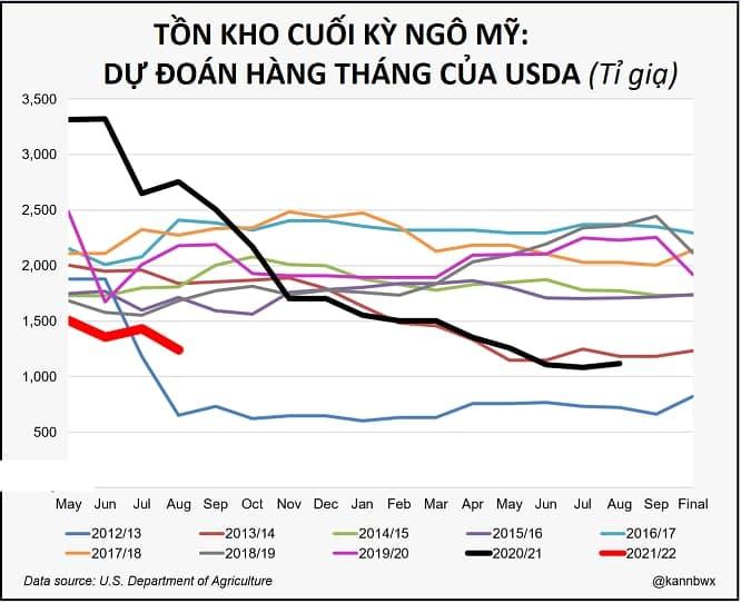 Phân tích ngô ngày 13/08/2021: Giá ngô tăng vọt sau báo cáo WASDE